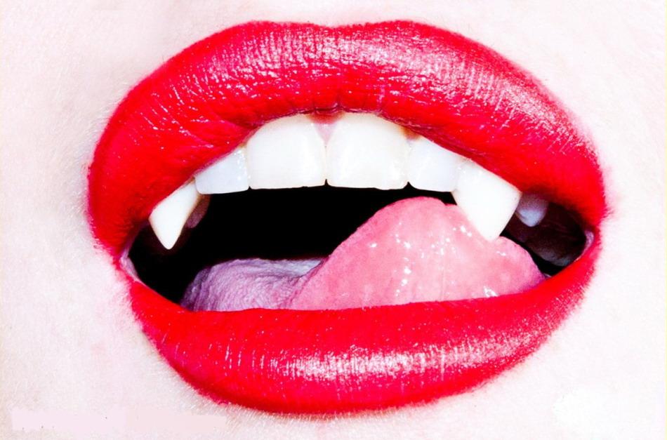 林赛·罗韩与迈克尔·特维诺携手拍摄吸血鬼大